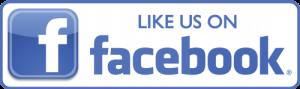 elvbio facebook